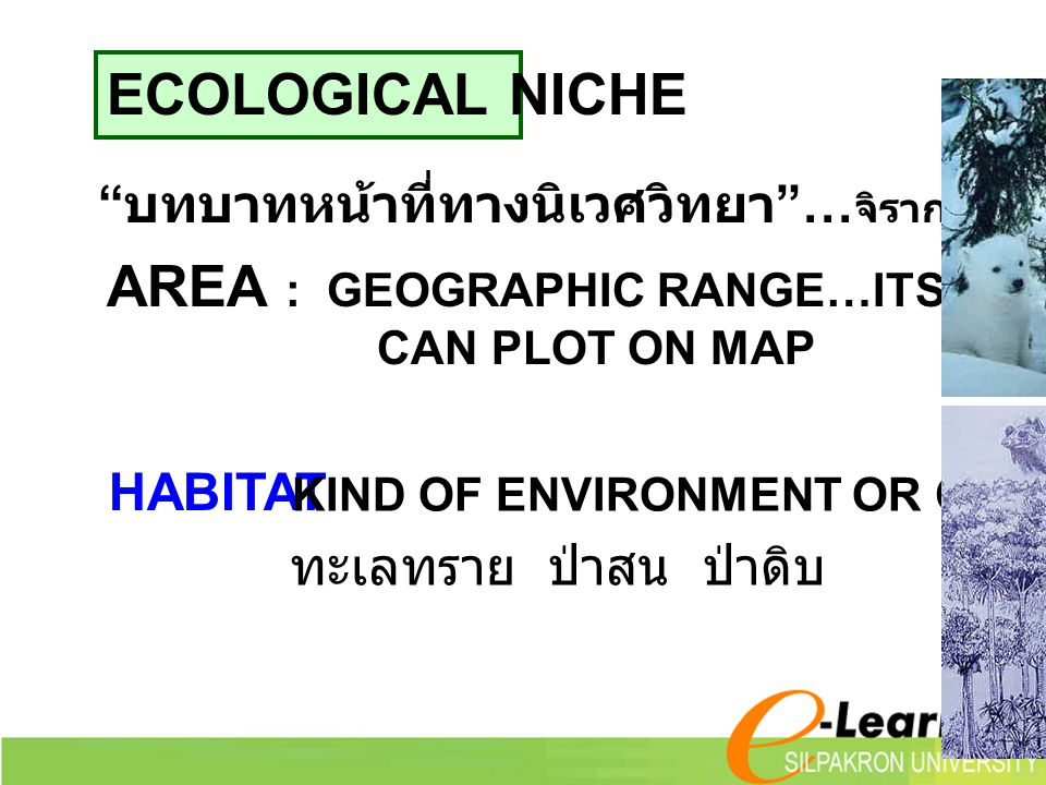 AREA : GEOGRAPHIC RANGE…ITS DISTRIBUTION