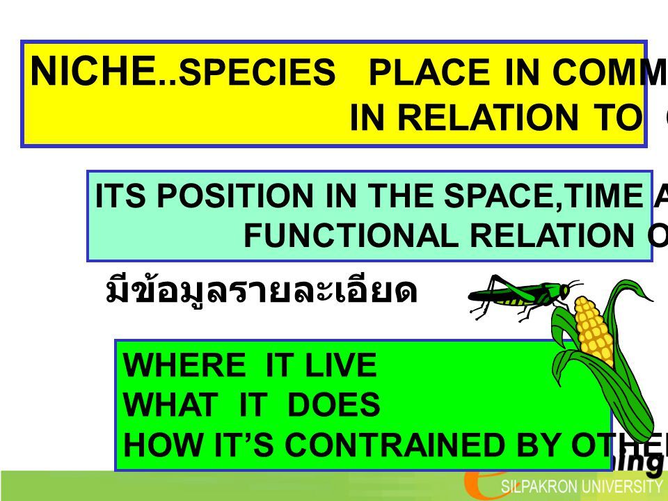 NICHE..SPECIES PLACE IN COMMUNITY