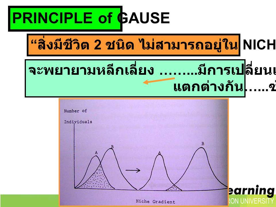 PRINCIPLE of GAUSE สิ่งมีชีวิต 2 ชนิด ไม่สามารถอยู่ใน NICHE เดียวกันได้ จะพยายามหลีกเลี่ยง ……...มีการเปลี่ยนแปลงในด้านต่างๆ.