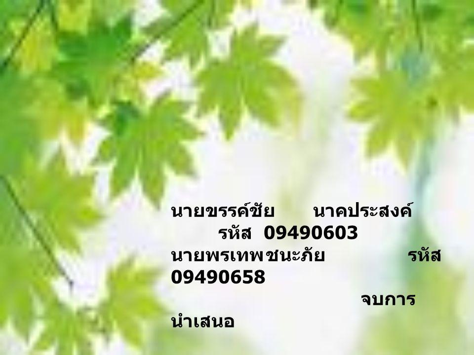 นายขรรค์ชัย นาคประสงค์ รหัส 09490603