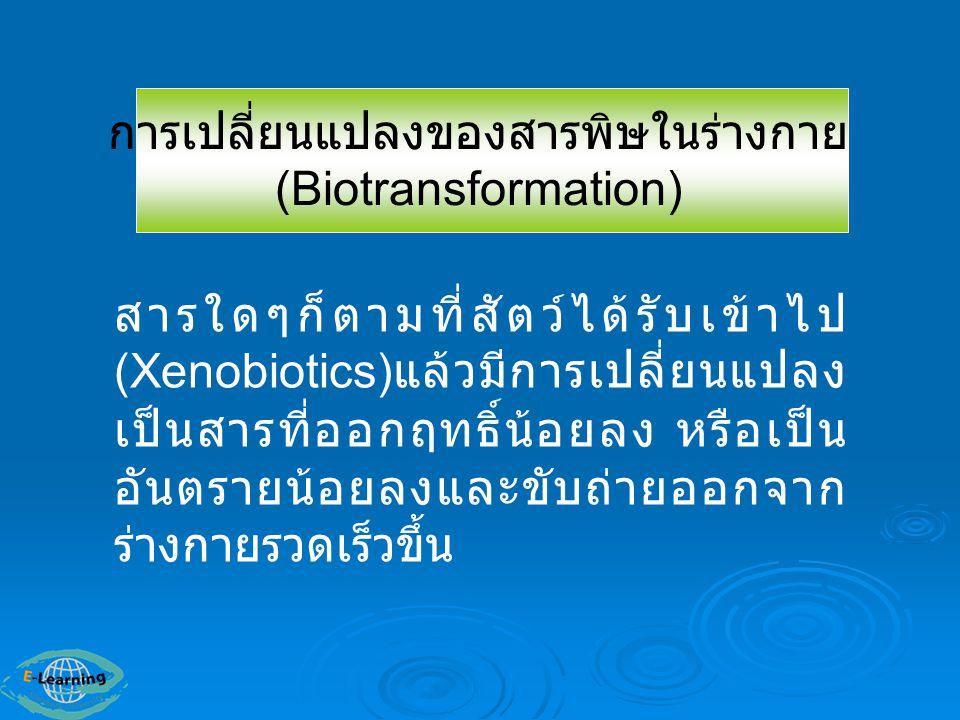 การเปลี่ยนแปลงของสารพิษในร่างกาย(Biotransformation)