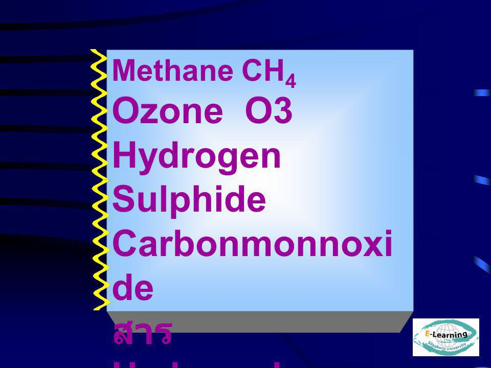 Ozone O3 Hydrogen Sulphide Carbonmonnoxide สาร Hydrocarbon HC