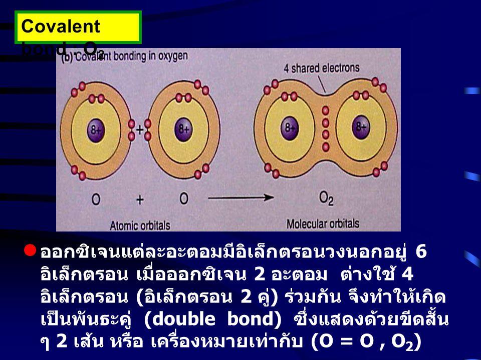 Covalent bond : O2