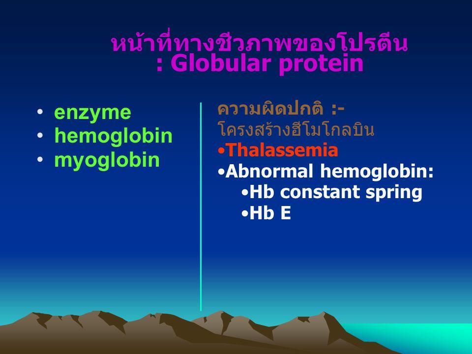 หน้าที่ทางชีวภาพของโปรตีน : Globular protein