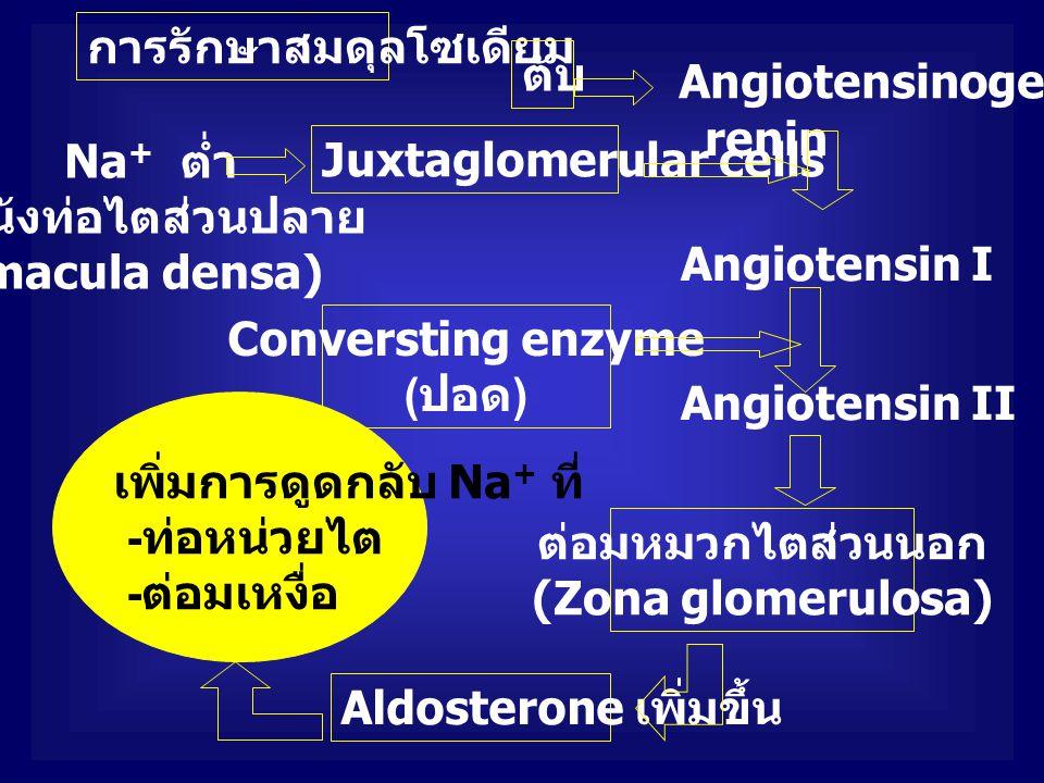 การรักษาสมดุลโซเดียม
