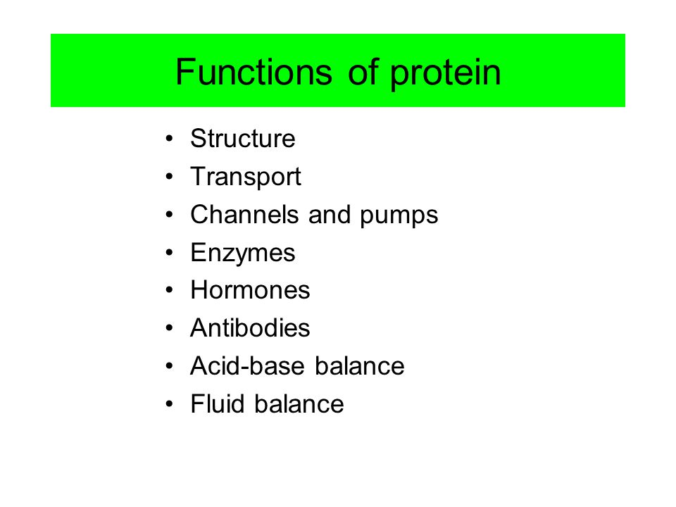 Functions of protein Structure Transport Channels and pumps Enzymes