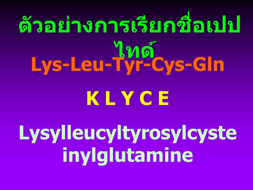 ตัวอย่างการเรียกชื่อเปปไทด์ Lysylleucyltyrosylcysteinylglutamine