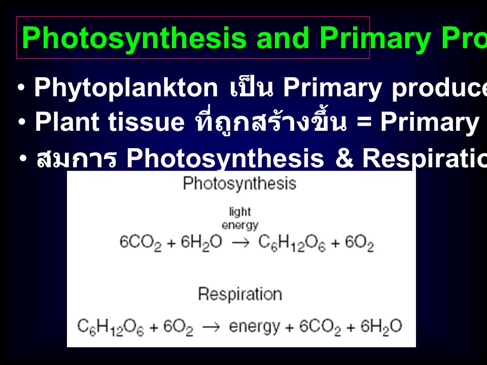 Photosynthesis and Primary Production