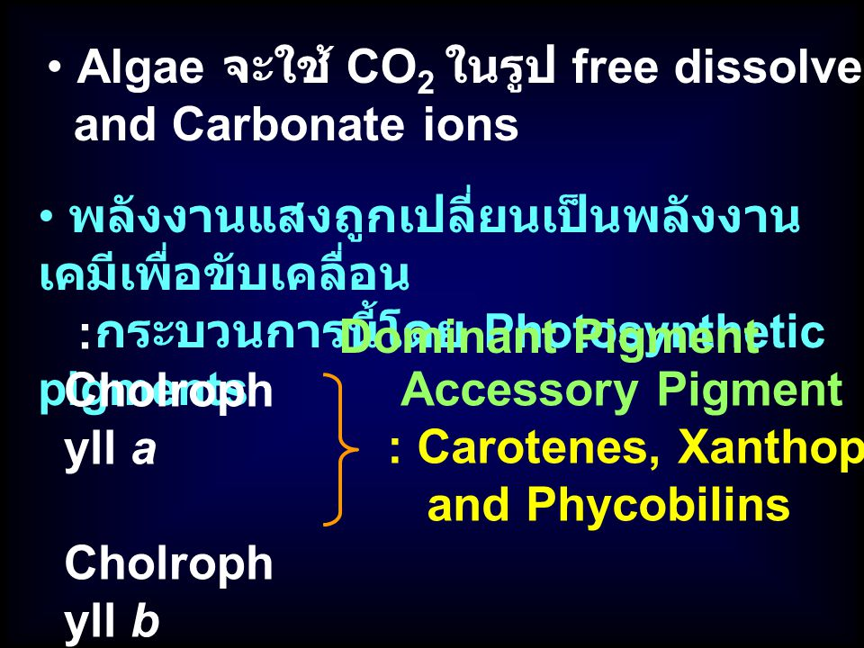 Algae จะใช้ CO2 ในรูป free dissolved CO2, Bicarbonate,