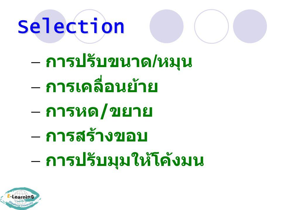Selection การปรับขนาด/หมุน การเคลื่อนย้าย การหด/ขยาย การสร้างขอบ