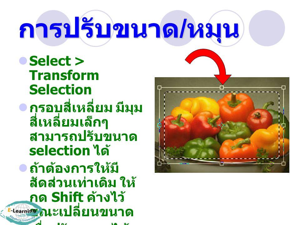 การปรับขนาด/หมุน Select > Transform Selection