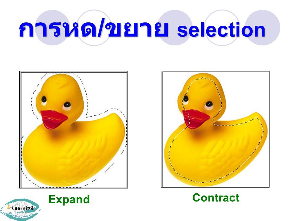 การหด/ขยาย selection Expand Contract