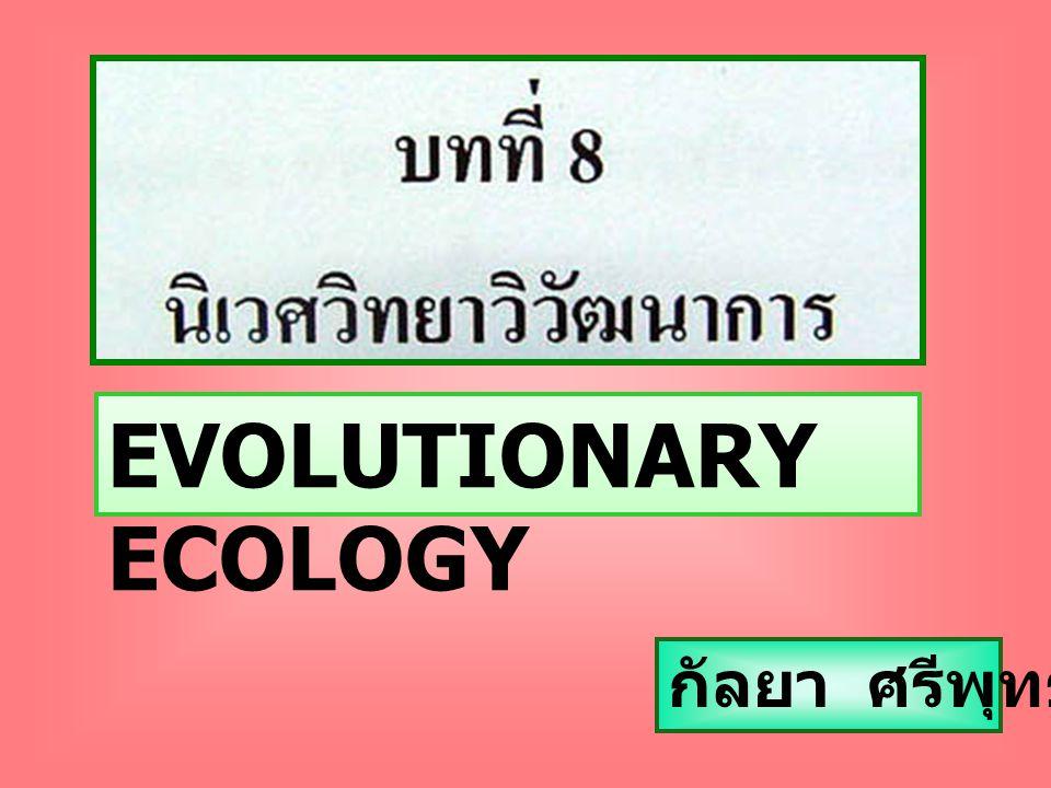 EVOLUTIONARY ECOLOGY กัลยา ศรีพุทธชาติ