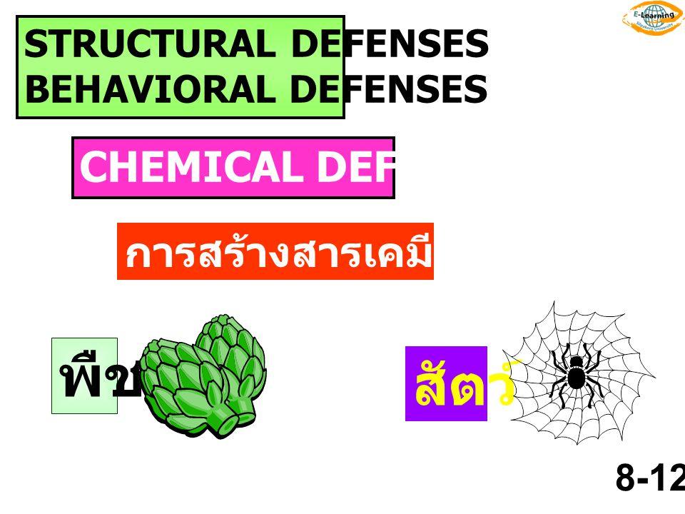 พืช สัตว์ CHEMICAL DEFENSES การสร้างสารเคมีป้องกันตัว