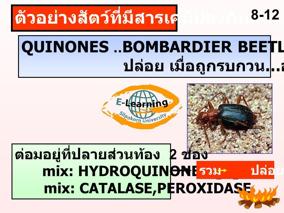 ตัวอย่างสัตว์ที่มีสารเคมีป้องกันตัว