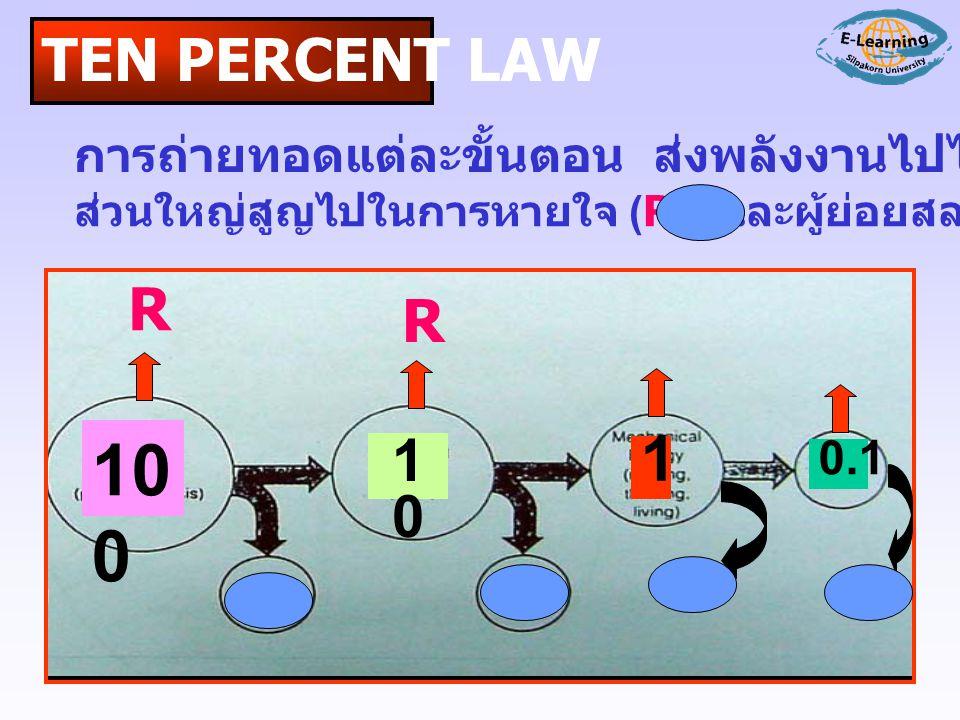 TEN PERCENT LAW การถ่ายทอดแต่ละขั้นตอน ส่งพลังงานไปได้เพียง 10-20 % ส่วนใหญ่สูญไปในการหายใจ (R) และผู้ย่อยสลาย ( )