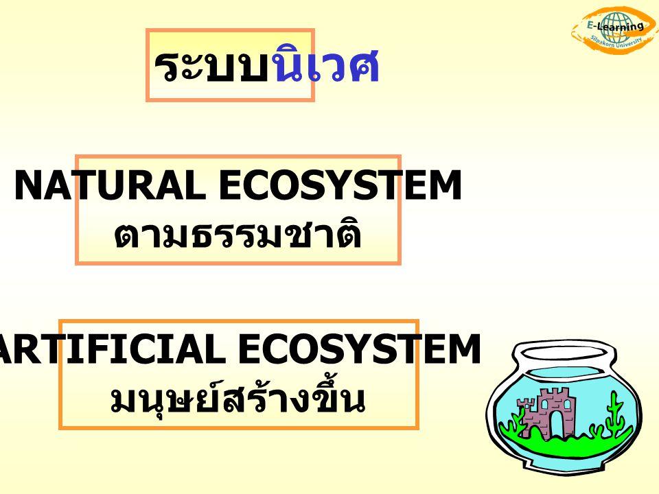 ระบบนิเวศ NATURAL ECOSYSTEM ตามธรรมชาติ ARTIFICIAL ECOSYSTEM