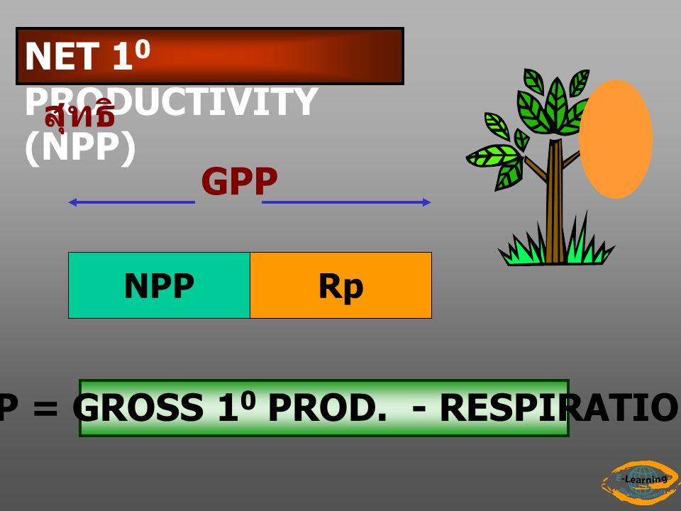 NPP = GROSS 10 PROD. - RESPIRATION