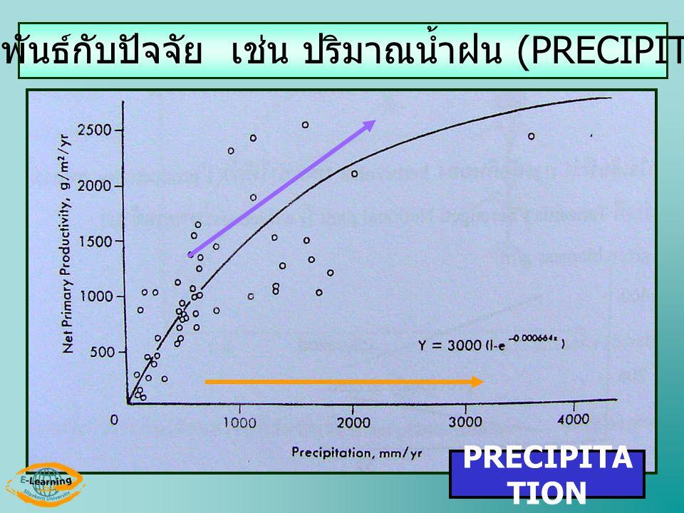 NPP สัมพันธ์กับปัจจัย เช่น ปริมาณน้ำฝน (PRECIPITATION)