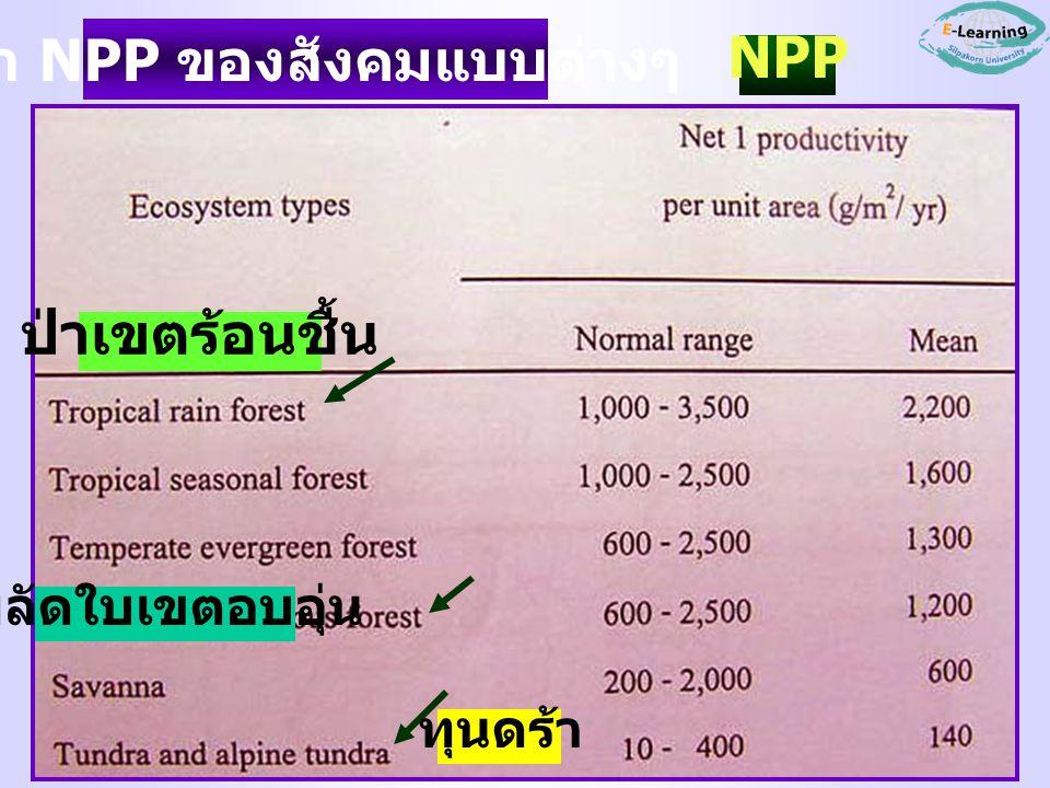 ค่า NPP ของสังคมแบบต่างๆ