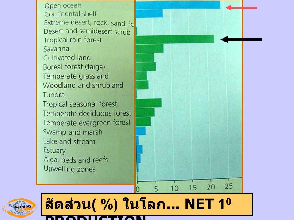 สัดส่วน( %) ในโลก... NET 10 PRODUCTION