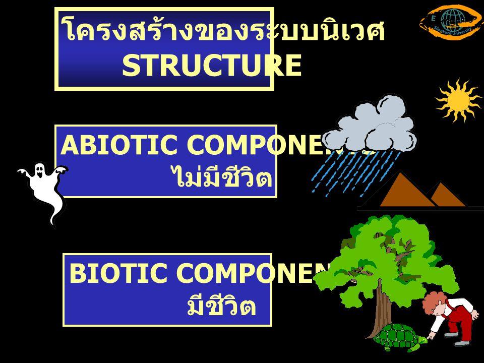 โครงสร้างของระบบนิเวศ STRUCTURE