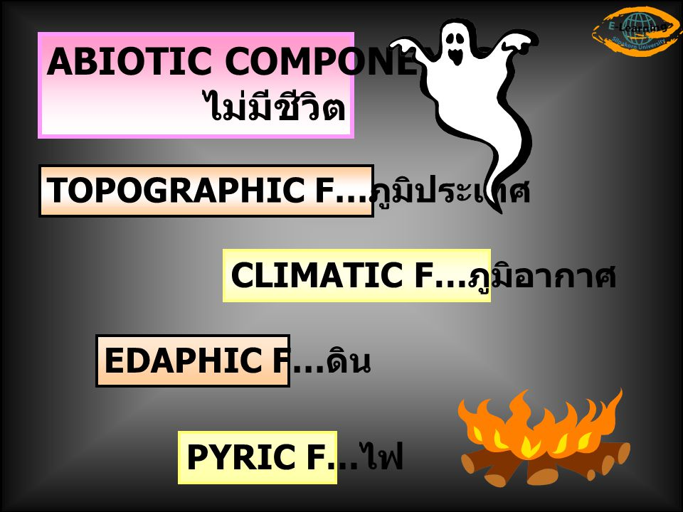 ABIOTIC COMPONENTS ไม่มีชีวิต TOPOGRAPHIC F…ภูมิประเทศ