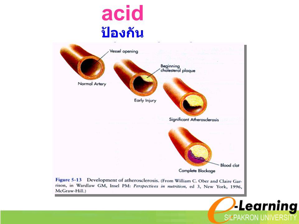 Linoleic acid ป้องกัน atherosclerosis ได้