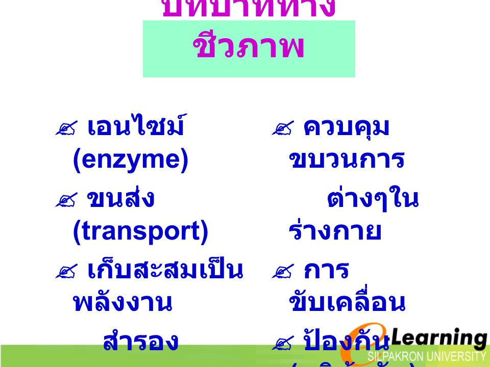 บทบาททางชีวภาพ  เอนไซม์ (enzyme)  ขนส่ง (transport)
