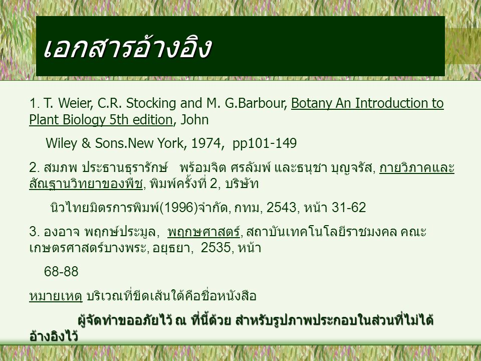 เอกสารอ้างอิง 1. T. Weier, C.R. Stocking and M. G.Barbour, Botany An Introduction to Plant Biology 5th edition, John.
