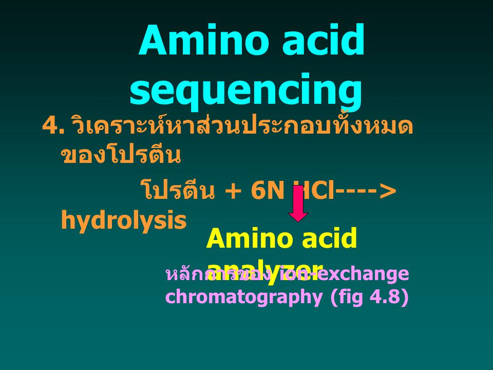 Amino acid sequencing Amino acid analyzer