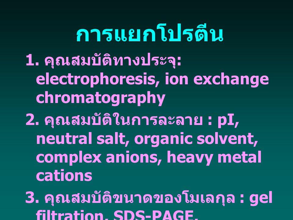 การแยกโปรตีน 1. คุณสมบัติทางประจุ: electrophoresis, ion exchange chromatography.