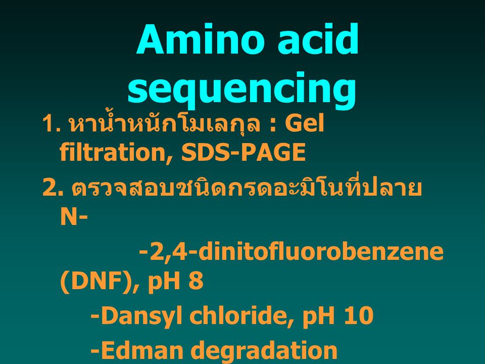 Amino acid sequencing 1. หาน้ำหนักโมเลกุล : Gel filtration, SDS-PAGE