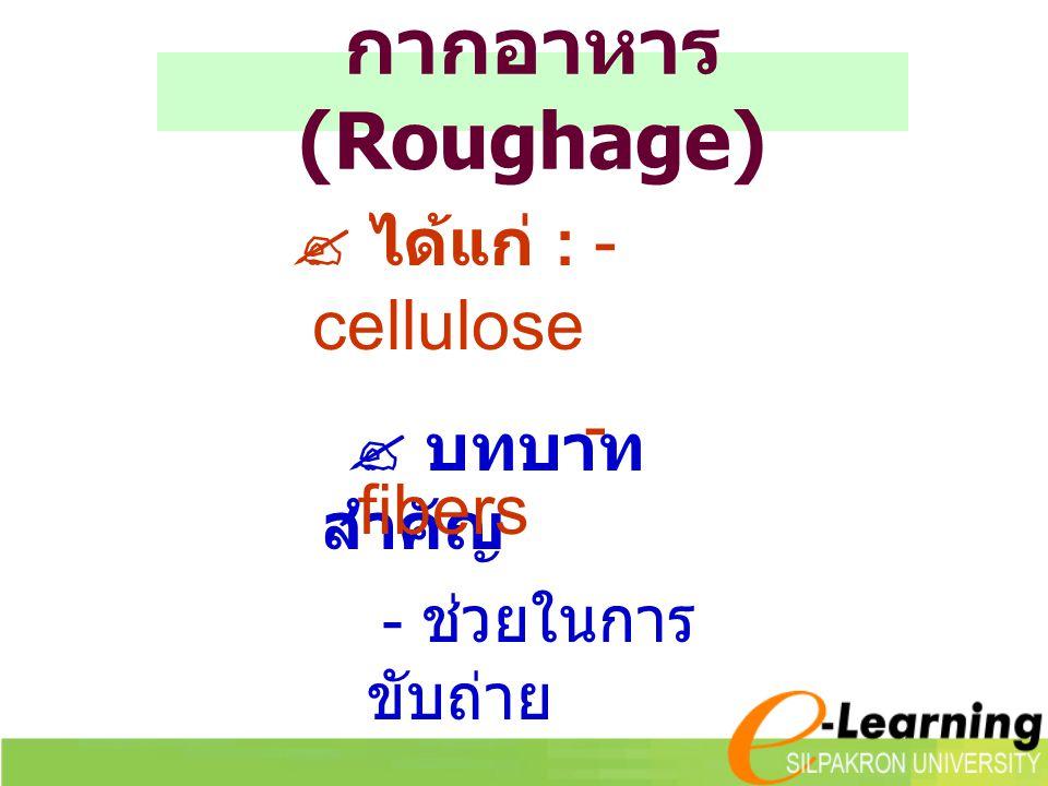 กากอาหาร (Roughage)  ได้แก่ : - cellulose  บทบาทสำคัญ - fibers