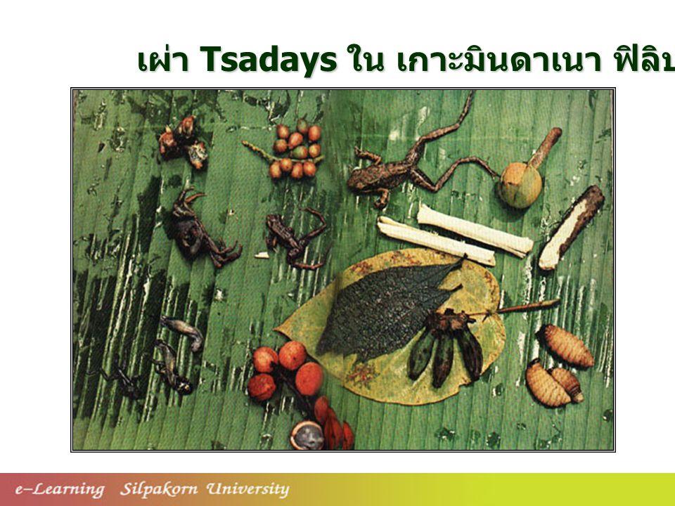 เผ่า Tsadays ใน เกาะมินดาเนา ฟิลิปปินส์