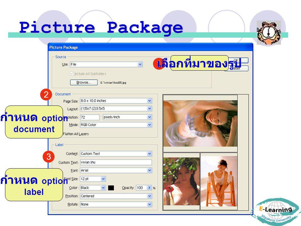 Picture Package เลือกที่มาของรูป กำหนด option กำหนด option 1 2