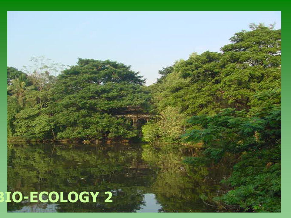 BIO-ECOLOGY 2