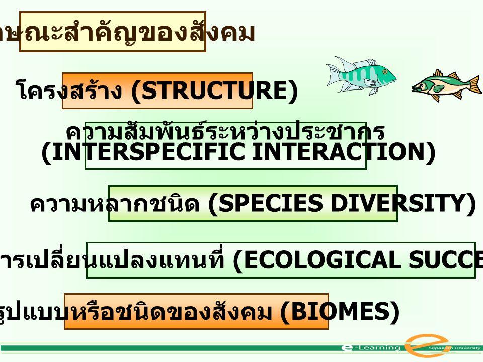 ลักษณะสำคัญของสังคม โครงสร้าง (STRUCTURE) ความสัมพันธ์ระหว่างประชากร