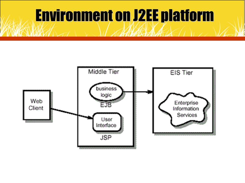 Environment on J2EE platform