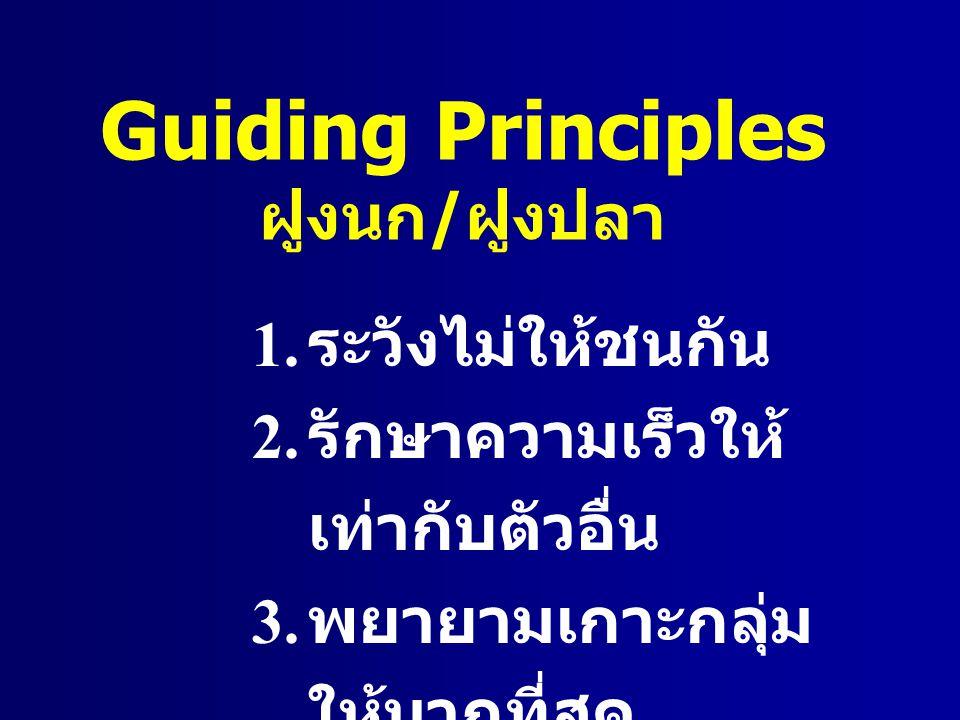 Guiding Principles ฝูงนก/ฝูงปลา ระวังไม่ให้ชนกัน