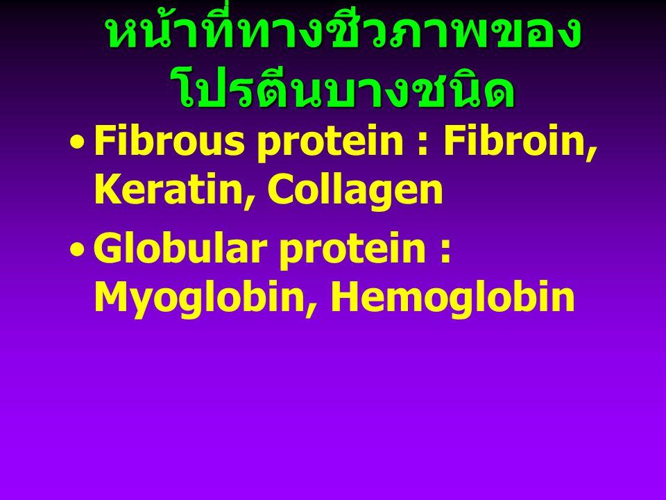 หน้าที่ทางชีวภาพของโปรตีนบางชนิด