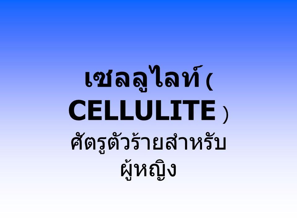 เซลลูไลท์ ( CELLULITE )