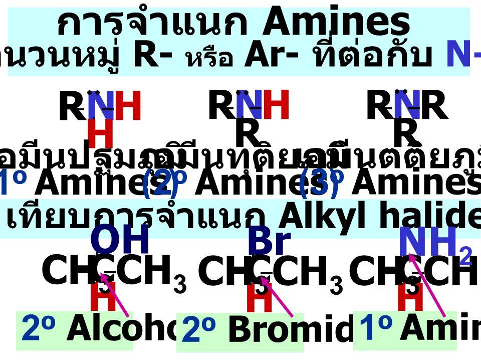 ตามจำนวนหมู่ R- หรือ Ar- ที่ต่อกับ N-Atom
