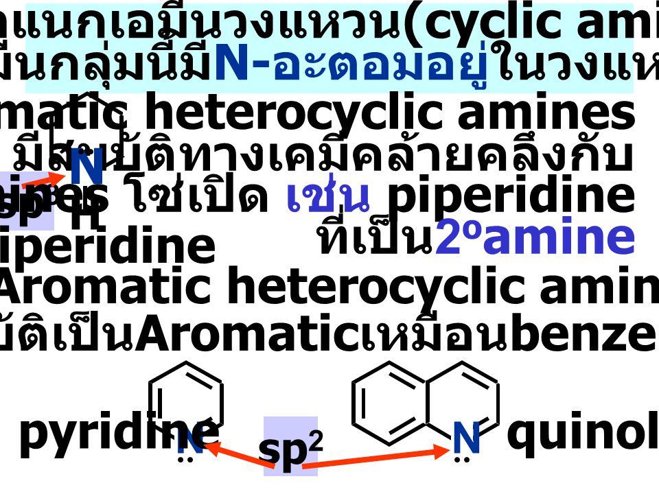 การจำแนกเอมีนวงแหวน(cyclic amines) เอมีนกลุ่มนี้มีN-อะตอมอยู่ในวงแหวน
