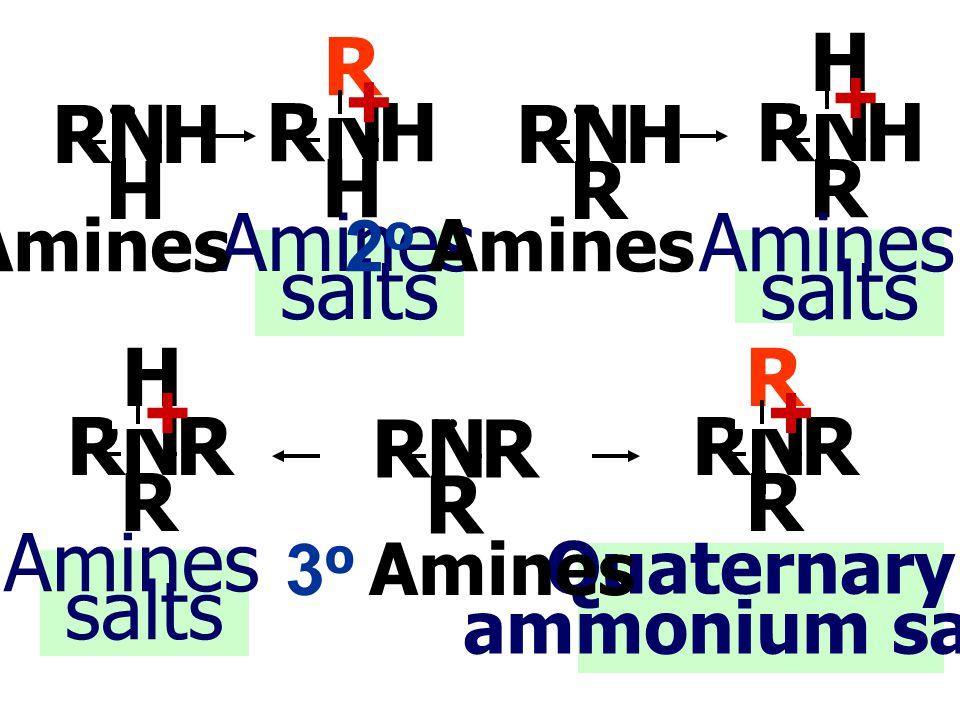 R + H + N H R N H R N R H N R H Amines salts Amines salts H + R + N R