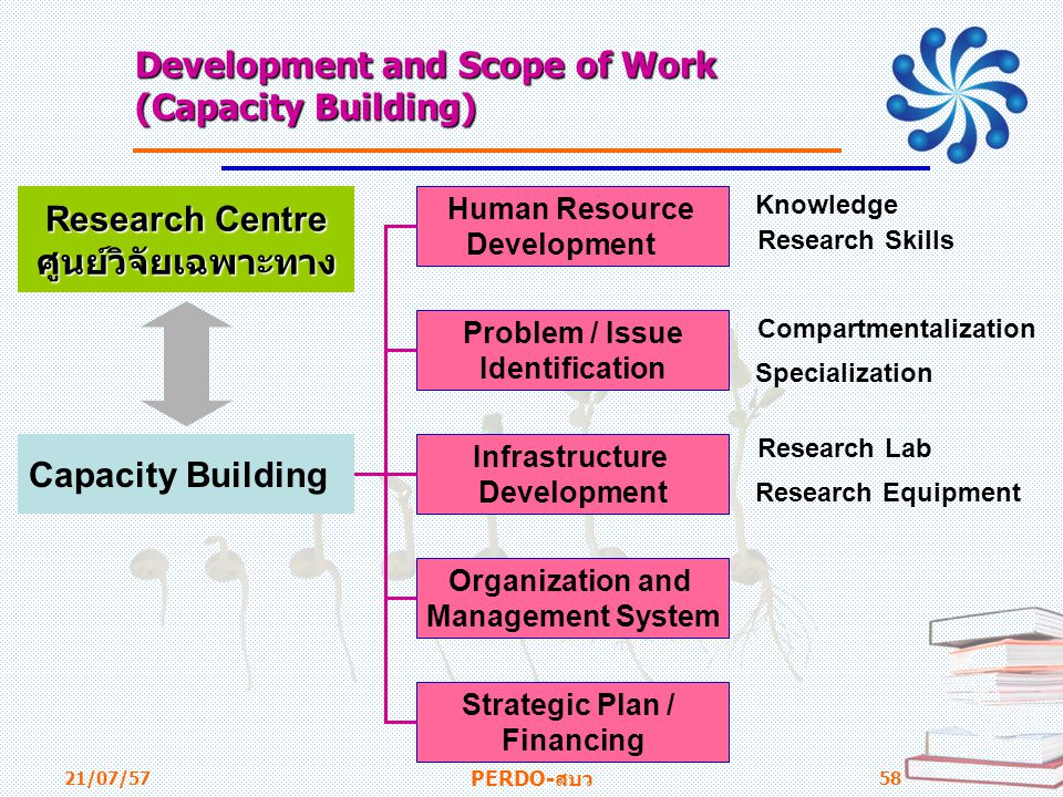 Development and Scope of Work (Capacity Building)