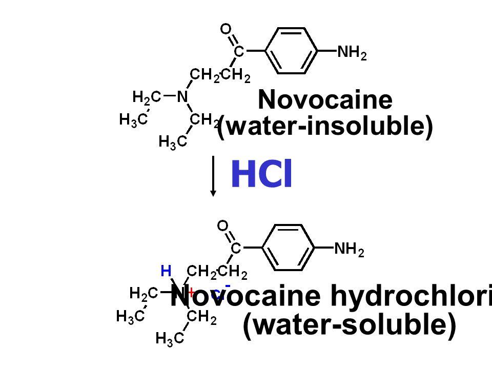 Novocaine hydrochloride