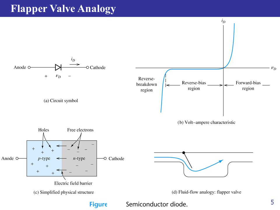 Flapper Valve Analogy 5