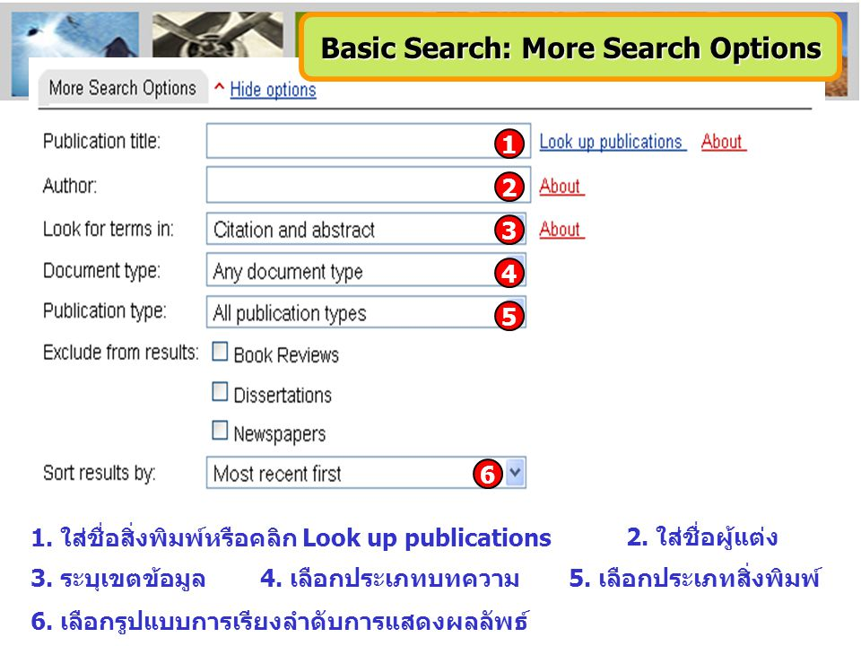 Basic Search: More Search Options
