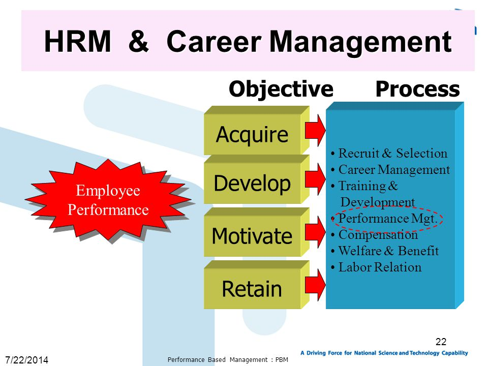 HRM & Career Management